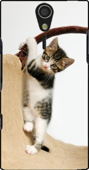 Baby cat, cute kitten climbing Case for Sony Ericsson Xperia S HD