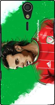 Euro Wales Case for Sony Ericsson Xperia S HD