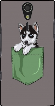 Husky Dog in the pocket Sony Ericsson Xperia S HD Case