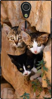 Three cute kittens in a wall hole Case for Sony Ericsson Xperia S HD