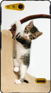 Baby cat, cute kitten climbing Case for Sony Xperia Go