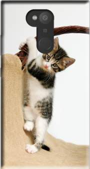 Baby cat, cute kitten climbing Case for Sony Xperia L2