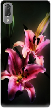 Painting Pink Stargazer Lily Case for Sony Xperia L3
