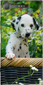 Cute Dalmatian puppy in a basket  Case for Sony Xperia XZ1