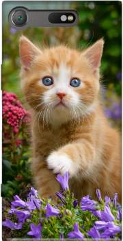 Cute ginger kitten in a flowery garden, lovely and enchanting cat Case for Sony Xperia XZ1 Compact