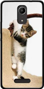 Baby cat, cute kitten climbing Case for Wiko Tommy 2