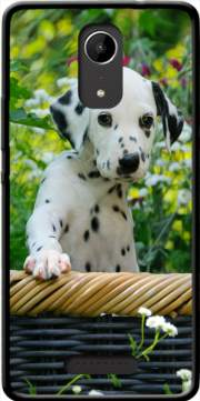 Cute Dalmatian puppy in a basket  Case for Wiko Tommy 2