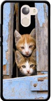 Cute curious kittens in an old window Wileyfox Swift 2x Case
