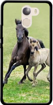 Horses, wild Duelmener ponies, mare and foal Case for Wileyfox Swift 2x
