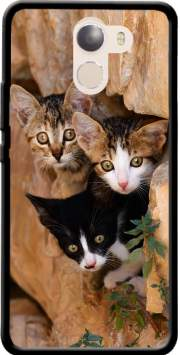 Three cute kittens in a wall hole Case for Wileyfox Swift 2x