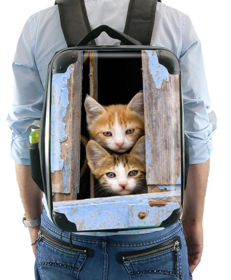 Cute curious kittens in an old window for Backpack