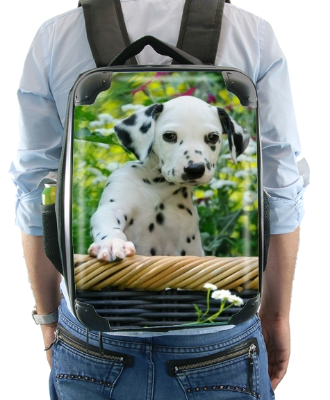 Cute Dalmatian puppy in a basket  for Backpack
