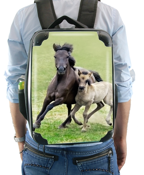 Horses, wild Duelmener ponies, mare and foal for Backpack