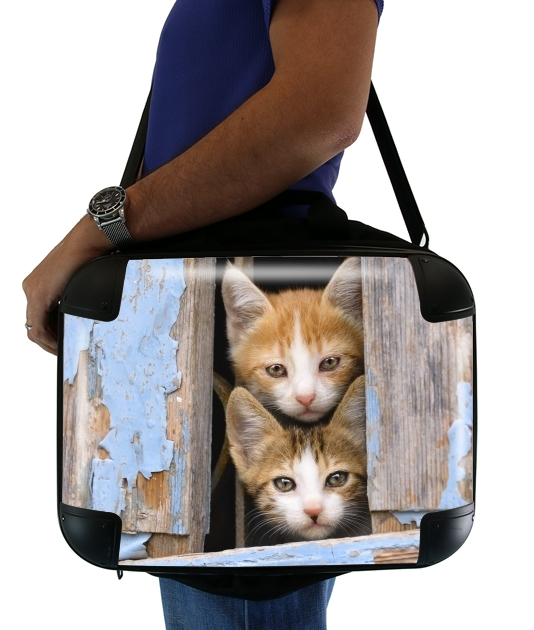 "Cute curious kittens in an old window for Laptop briefcase 15"" / Notebook / Tablet"