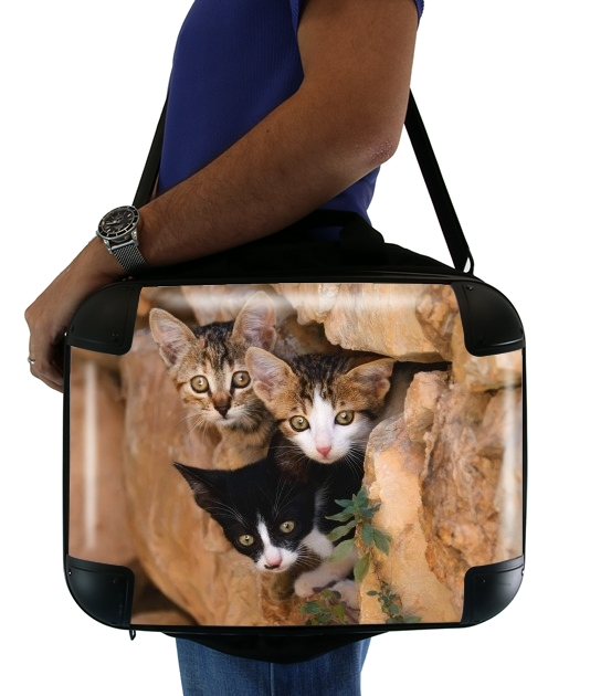 "Three cute kittens in a wall hole for Laptop briefcase 15"" / Notebook / Tablet"