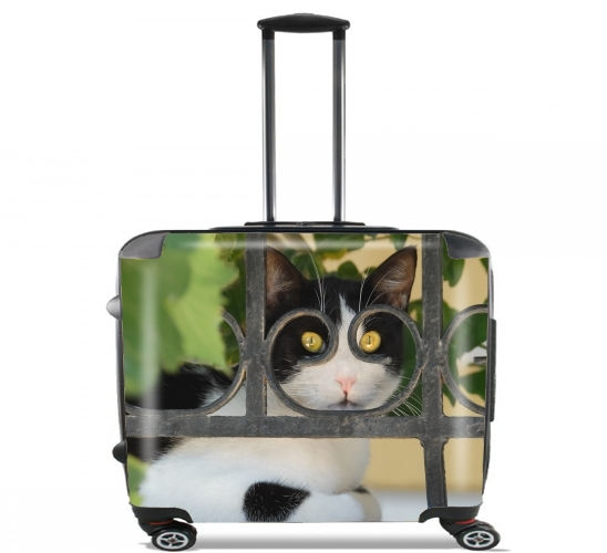 "Cat with spectacles frame, she looks through a wrought iron fence for Wheeled bag cabin luggage suitcase trolley 17"" laptop"
