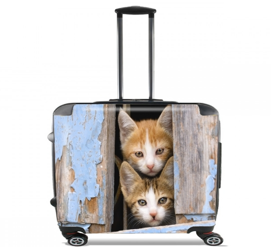 "Cute curious kittens in an old window for Wheeled bag cabin luggage suitcase trolley 17"" laptop"