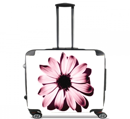 "Daisy Burgundy for Wheeled bag cabin luggage suitcase trolley 17"" laptop"