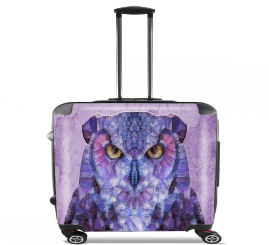 "funny owl for Wheeled bag cabin luggage suitcase trolley 17"" laptop"