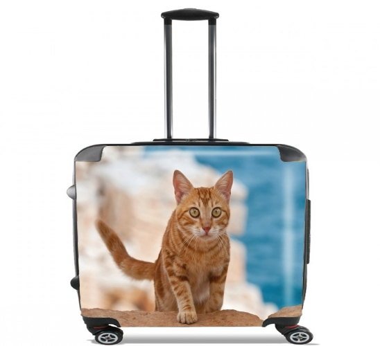 "Ginger kitten on a cliff for Wheeled bag cabin luggage suitcase trolley 17"" laptop"