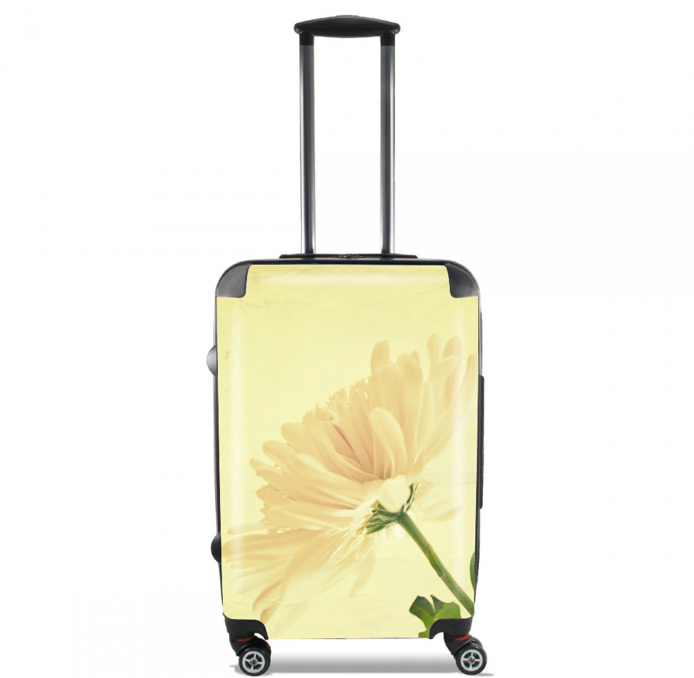 A Revelation for Lightweight Hand Luggage Bag - Cabin Baggage