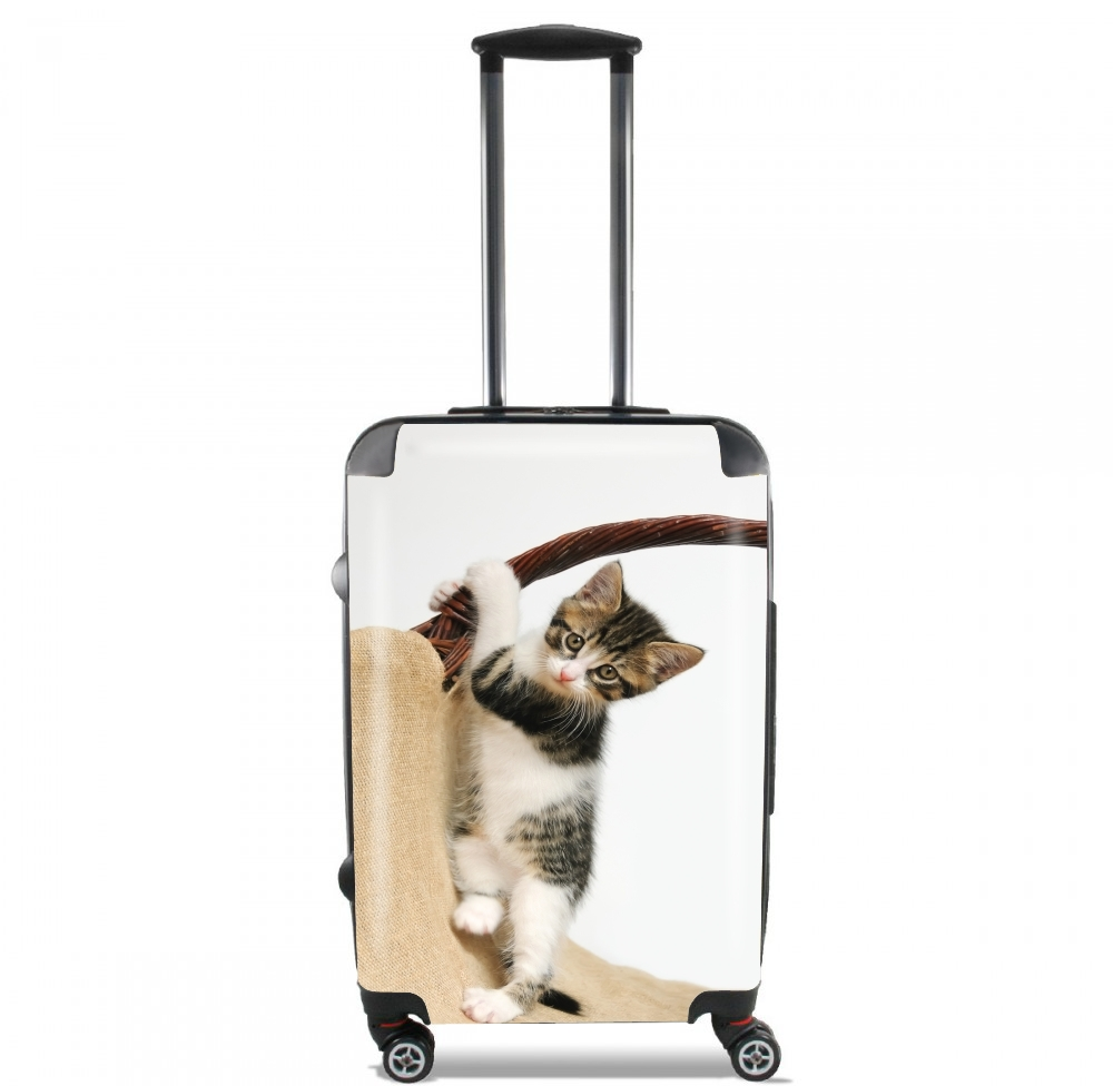 Baby cat, cute kitten climbing for Lightweight Hand Luggage Bag - Cabin Baggage