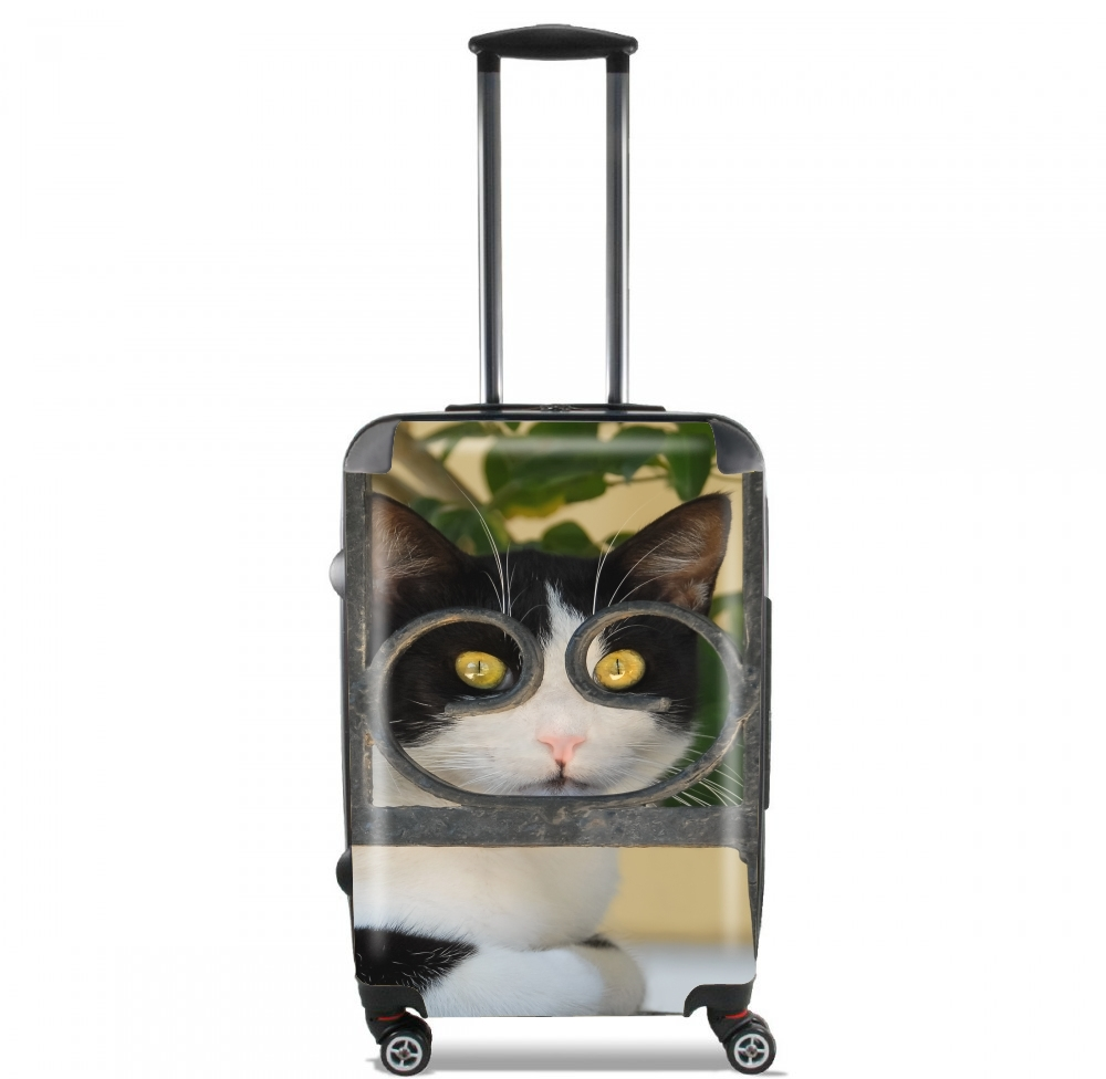Cat with spectacles frame, she looks through a wrought iron fence for Lightweight Hand Luggage Bag - Cabin Baggage
