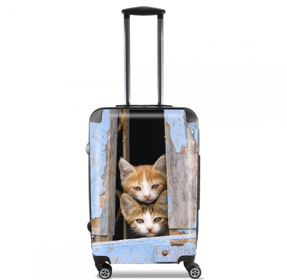 Cute curious kittens in an old window for Lightweight Hand Luggage Bag - Cabin Baggage