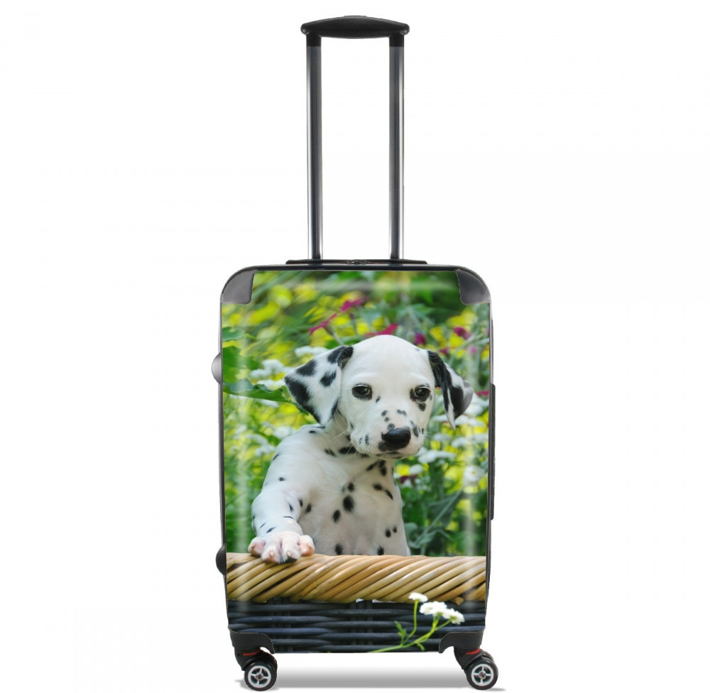 Cute Dalmatian puppy in a basket  for Lightweight Hand Luggage Bag - Cabin Baggage