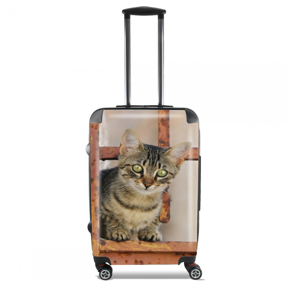 Cute kitten on a rusty iron door  for Lightweight Hand Luggage Bag - Cabin Baggage