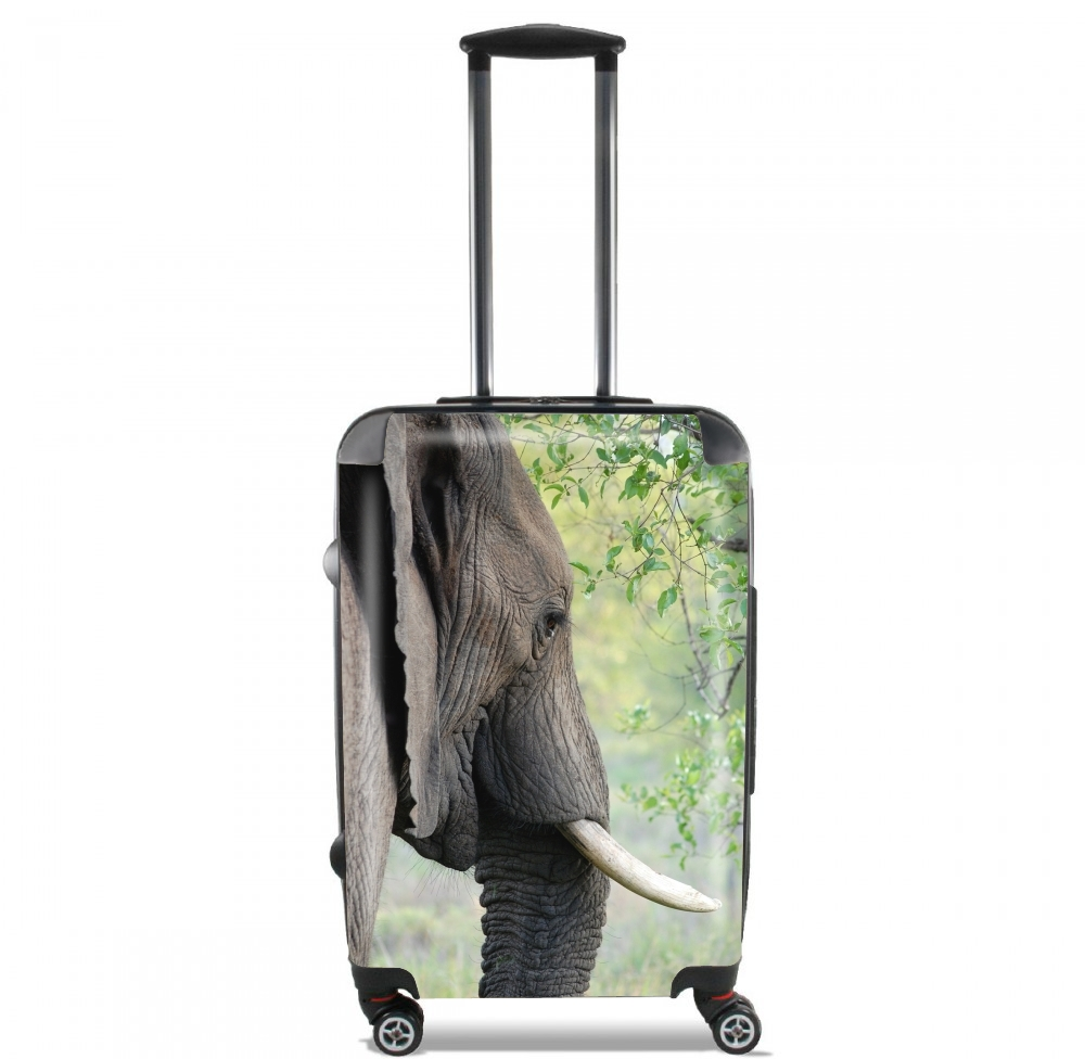 Elephant for Lightweight Hand Luggage Bag - Cabin Baggage