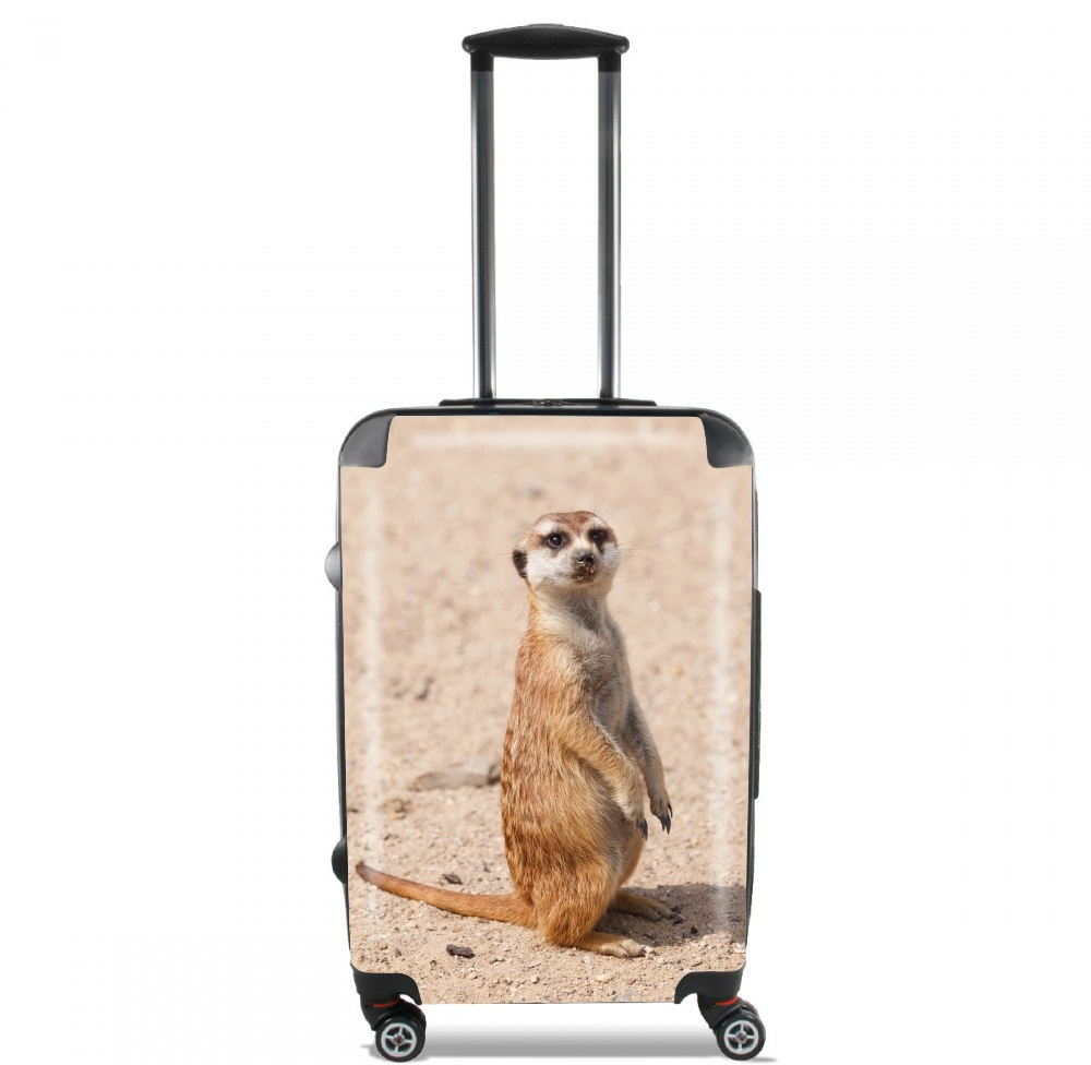Meerkat for Lightweight Hand Luggage Bag - Cabin Baggage
