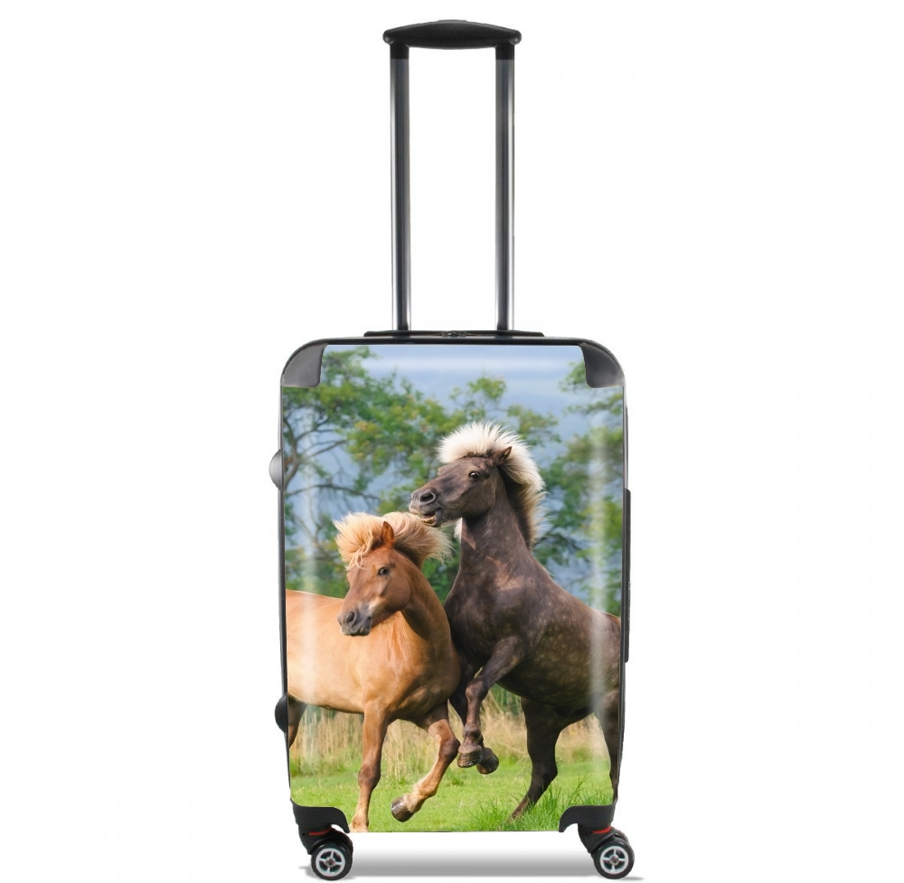 Two Icelandic horses playing, rearing and frolic around in a meadow for Lightweight Hand Luggage Bag - Cabin Baggage